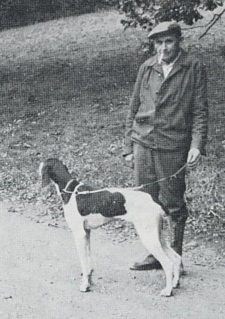 Nekrolog, æresmedlem af Dansk Pointer Klub Alfred Olsen