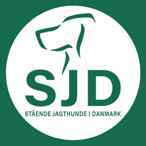 Stående Jagthunde i Danmark