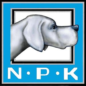 Norsk Pointer Klub