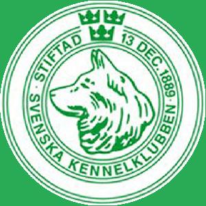 Svensk Pointer KLub - Svenska Kennelklubben