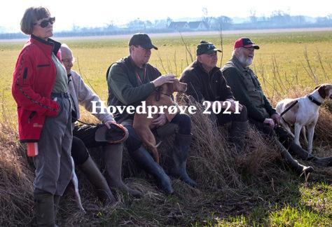 Dansk Pointer Klub's Hovedprøve 2021