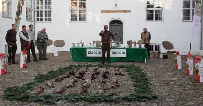 Danmarksmesterskab for stående jagthunde