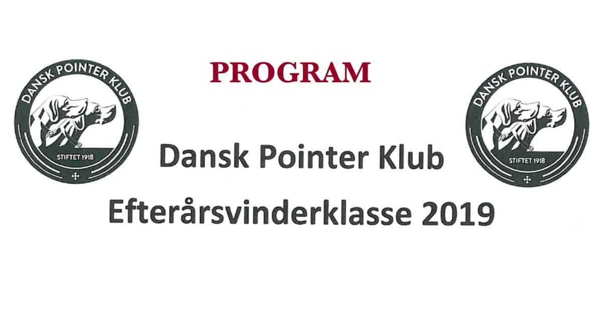 program-dpk-efter-vk-2019