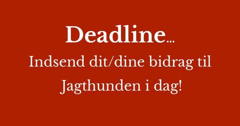 Deadline Jagthunden