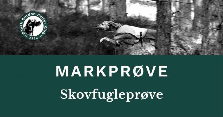 Dansk Gordon Setter Klub - Skovfugleprøve