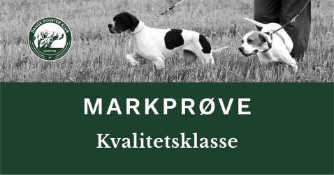 DPKs kvalitetsklasse ved Holbæk