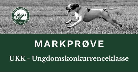 DPKs UKK ved Holbæk