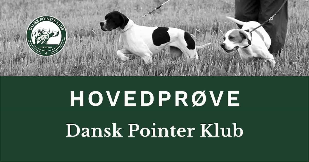 Dansk Pointer Klubs hovedprøve over 3 dage