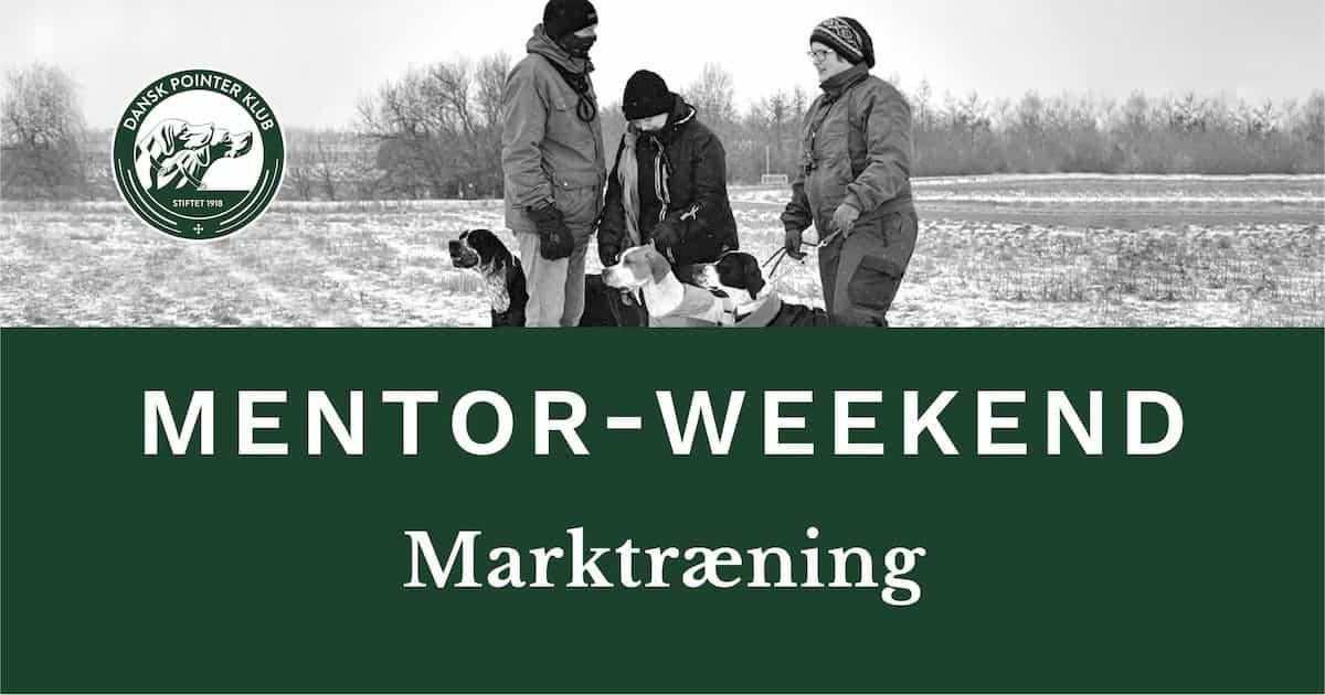 Dansk Pointer Klubs Mentor-weekend