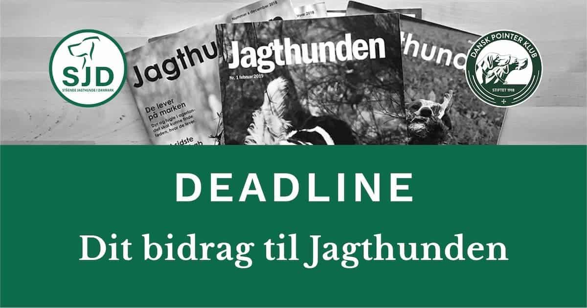 Indsend dit/dine bidrag til Jagthunden i dag.