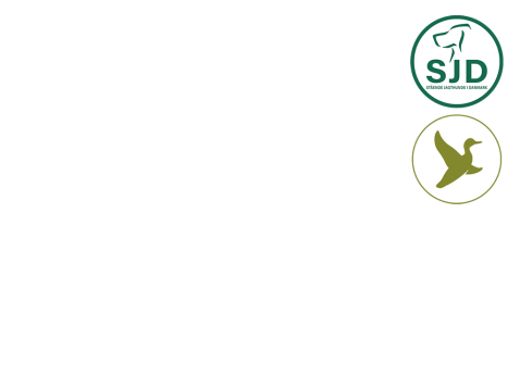 Arrangør Stående Jagthunde i Danmark (SJD) / Danmarks Jægerforbund