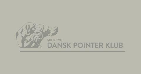 Dansk Pointer Klub