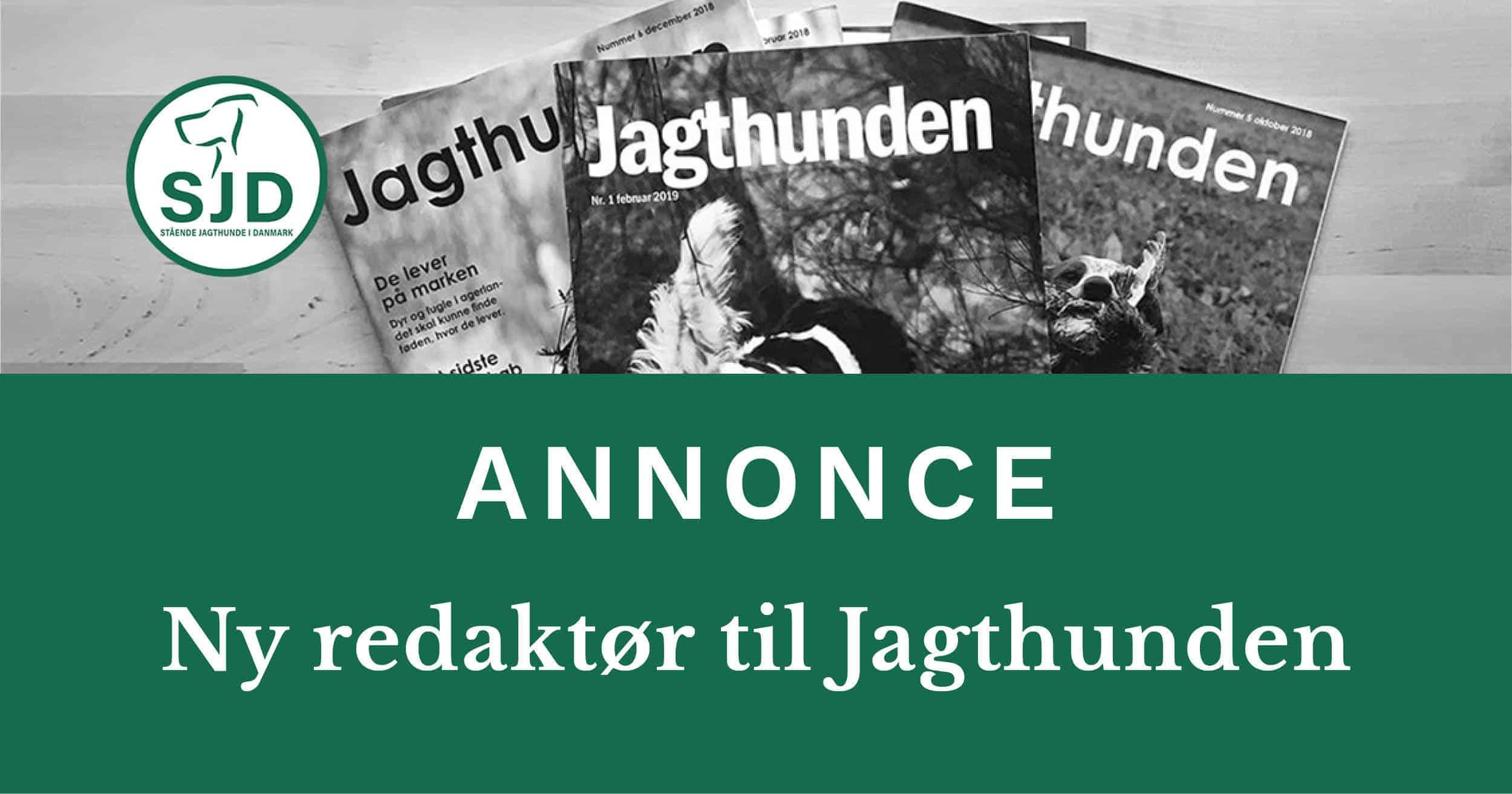 Meddelelse fra SJD - Stående Hunde i Danmark