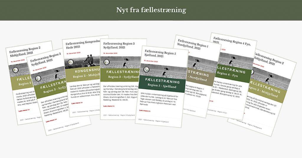 Fællestræning i Dansk Pointer Klub