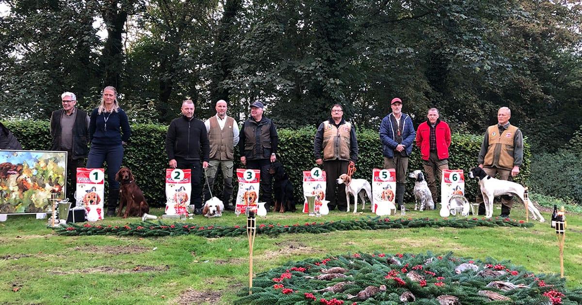 Placerede ved Danmarksmesterskab for stående Engelske hunde 2021